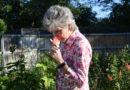 Texas Rose Lady Donates 200 Rose Bushes