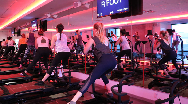 Fitnesster businessn example training facility