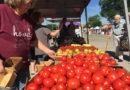 Saint Michael's Farmers Market Returns for 8th Season