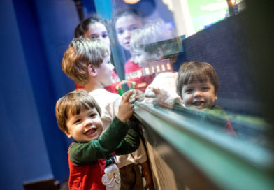 All Aboard: Trains at NorthPark Is Holiday Tradition