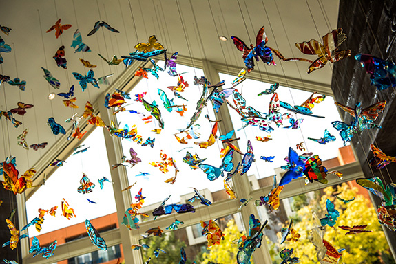 New butterfly installation by Carlyn Ray