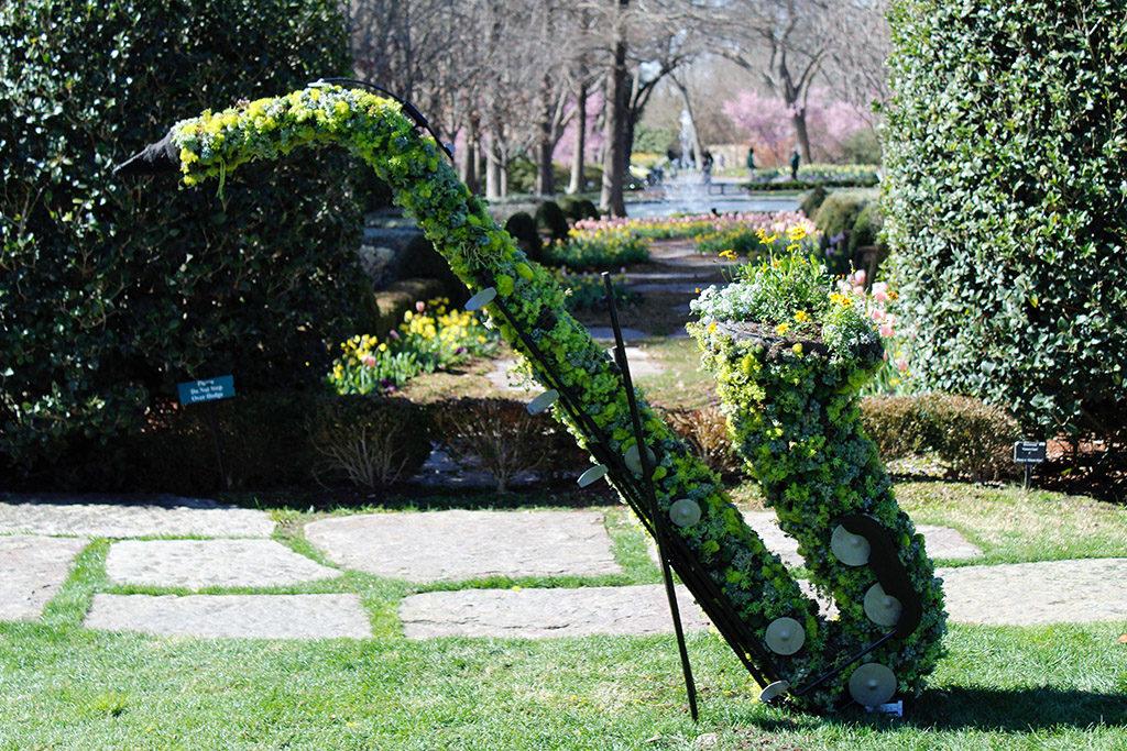 Saxophone succulent
