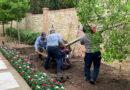 Lawns of Dallas Ownership Change Brought Dramatic Growth